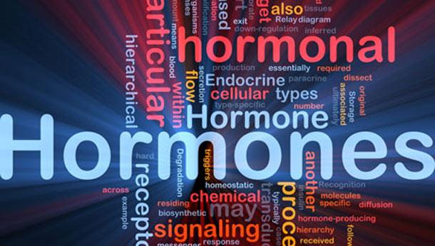 Ορμόνες: πόσο επηρεάζουν το σωματικό μας βάρος; (2)